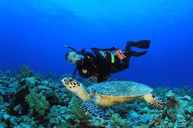 Discover Scuba Diving Fotos
