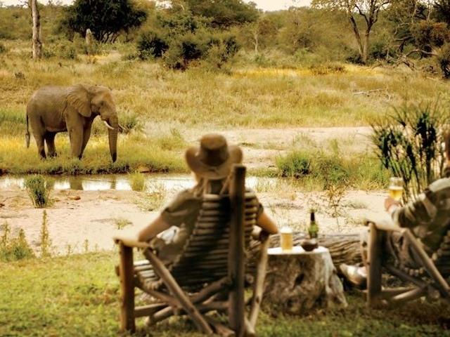 Kruger Park Motswari Private Game Reserve Photos