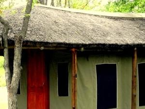 Greater Kruger Park - Shindzela Tented Camp Fotos