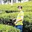 Ashok Munot