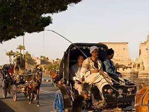 Luxor City Tour By Horse Carriage Fotos