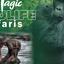 Magic Safaris