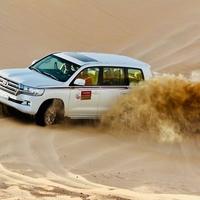 Arabian Safari