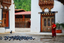 Inside The Magnificent Punakha Dzong