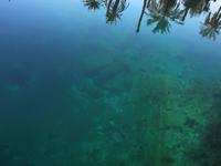 Cleopatra Pool - Siwa Oasis