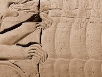 Kom Ombo Feeding Hands To Lions
