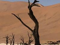 3 Day Namib Desert Tour