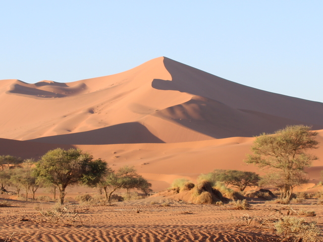 Namibia Safari Photos