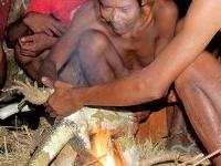 Explore Bukit Duabelas National Park and Visit Anak Dalam Tribe