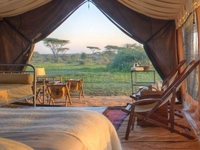 5days Lodging Safari In The Northen
