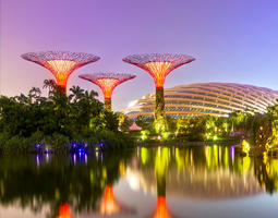 Get Mesmerizing Tour of Singapore