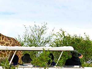 3 Day Namibia Guided Tour - Windhoek To Swakopmund Photos