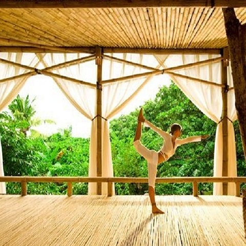 Yoga Classes At Your Place Photos