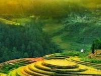 Ha Noi - Sapa - Ha Long Bay - Ninh Binh 7Days Package