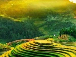 Ha Noi - Sapa - Ha Long Bay - Ninh Binh 7Days Package Photos