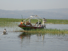 Lake Awassa Hawassa