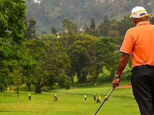 Golf and Primates Fotos