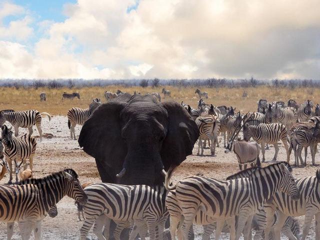 Namibia Beyond Photos