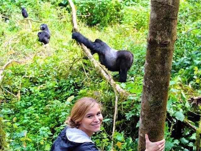 3 Days Gorilla Trekking Photos