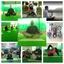 Kunwar Yoga Rishikesh