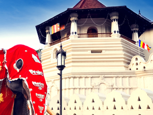 Culture lover Tour in Sri Lanka Photos