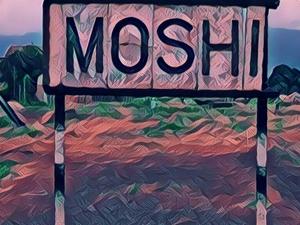 Discover Moshi Roadtrip Escapade Photos