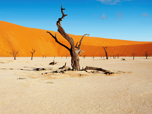 3 Day Sossusvlei (Lodging)