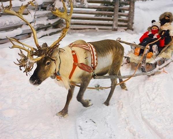 Christmas in Finland 2020 Photos