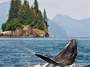 14 Day Alaska & British Columbia