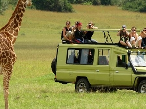 4 Day Tanzania Safari Tarangire, Serengeti and Ngorongoro Fotos