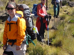 Day Tour To Mount Kenya Fotos