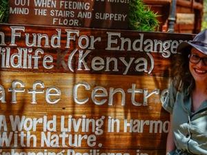Day Tour to Elephant Orphanage and Giraffe Center Fotos