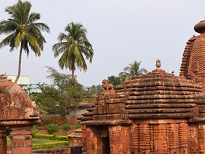 Eastern India Pilgrimage with kolkotta Gangasagar Tour Photos