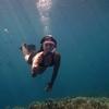 Snorkeling & Diving at Open Sea of Mount Krakatau