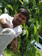 Nagesh Gangadhar