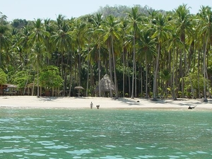Get in Love in Tortuga Island, Costa Rica Photos