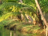 Outing Kerala Tourism Packages