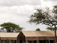 6 Days Serengeti Migration Camping Safaris