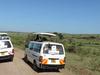 Kenya Best Adventure Safari
