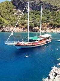 My Cruise