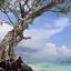 Maya Cay