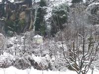 Shimla ,Kullu ,Manali Holiday Package