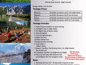 Gilgit & Naltar Honeymoon & Family Tour