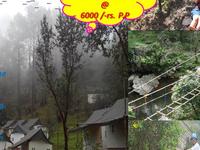 Avani Travels Adventure Camp 2015