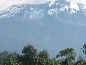 Marangu Route Trekking Photos