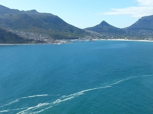 Explore the Cape Peninsula