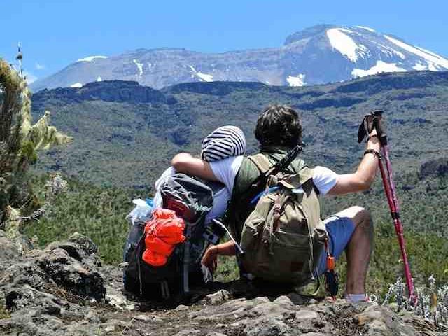 8 Days Mount Kiliamanjaro Lemosho Root Photos