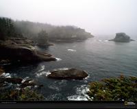 Pacific Coast Xl
