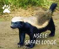 Nsele Lodge