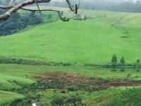 Horton Plains (little England)